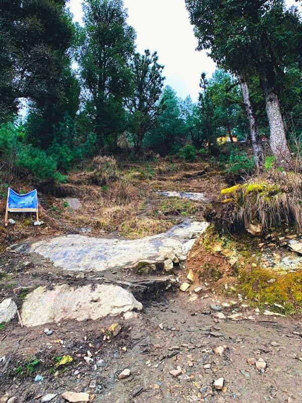 trail-kedarkantha