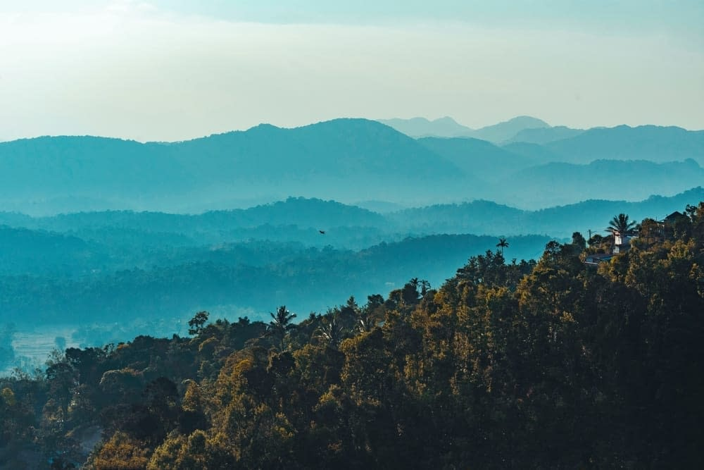 Coorg-topcharted